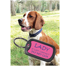The pet market is booming and there is always a demand for functional personalized items such as pet tags. Photo courtesy of LaserBits Inc.